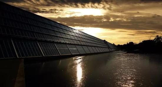 太阳能在阴天不能发电?这种细菌表示不服