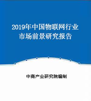 2019年中国物联网行业市场前景研究报告